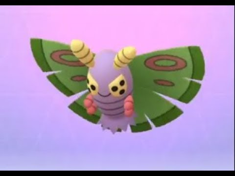 Wurmple to Cascoon to Dustox Evolution Pokemon Go - YouTube  Wurmple to Casc...