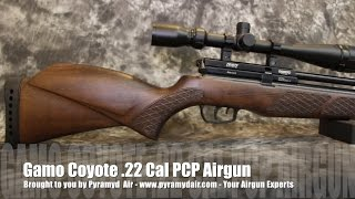 Gamo Coyote PCP .22 Caliber - Airgun Review by AirgunWeb / Rick Eutsler