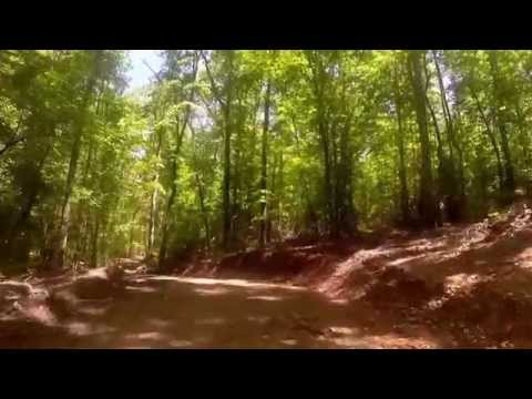 40+/- Acres For Sale in Cleburne County Alabama
