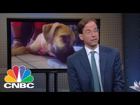IDEXX Laboratories CEO: Play On Pets | Mad Money | CNBC