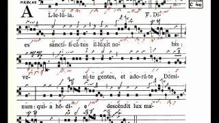 Alleluia: Dies sanctficatus - Graduale Triplex