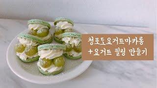 청포도요거트 마카롱 +요거트 필링 만들기 / 위즈웰 오…