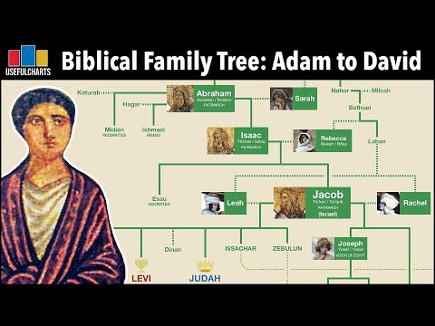 Biblical Family Tree | Adam \u0026 Eve To King David