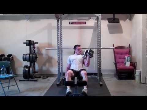 Bicep Workout