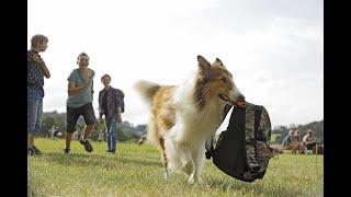 Lassie Torna A Casa | Spot Il cane più famoso del mondo HD