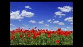 Хай живе вільна Україна! ✌ Long live free Ukraine! | Ukrainian song mp3
