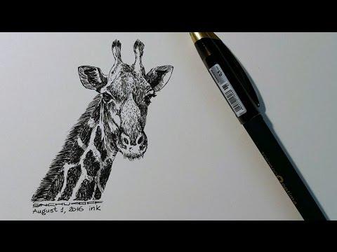 Жираф - рисуем гелевой ручкой