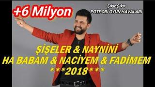 MevlÜt TaŞpinar - 2018 Potpori ŞİŞeler & Naynİnİ  & Ha Babam & Nacİy