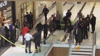 Gunman Opens Fire In LI Mall