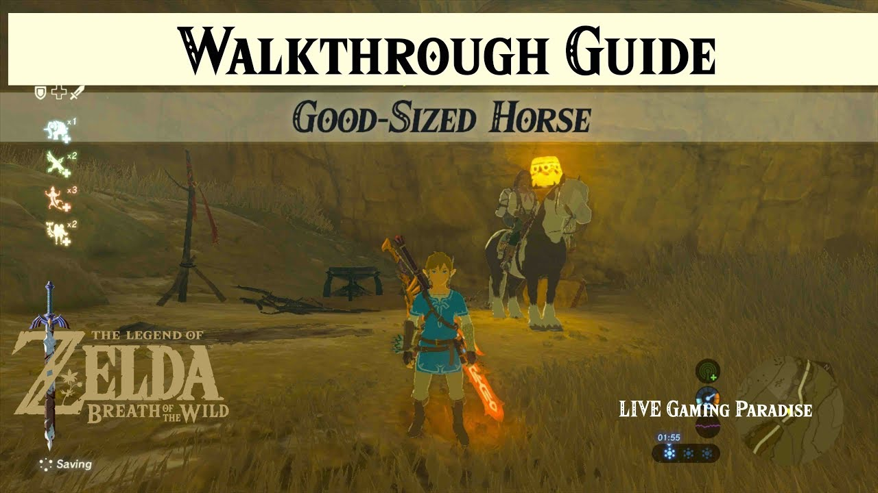 Breath Of The Wild Good Sized Horse Walkthrough Guide