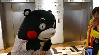 くまモン、平成最後の夏なのにボクはなんにも夏らしいことせんかったモン@川崎ダイス2018/09/01
