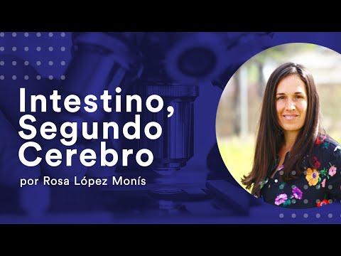 Intestino, Segundo cerebro./ Intestine, As our second brain (with english subtitles)