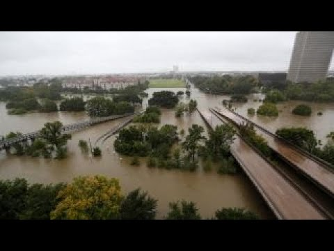 Harvey's impact on Texas: Port of Houston executive director explains