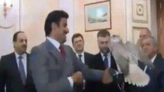 Владимир Путин подарил эмиру Катара сокола
