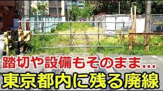東京都内に残る廃線、北王子線を見学しました。踏切や信号機も現存。