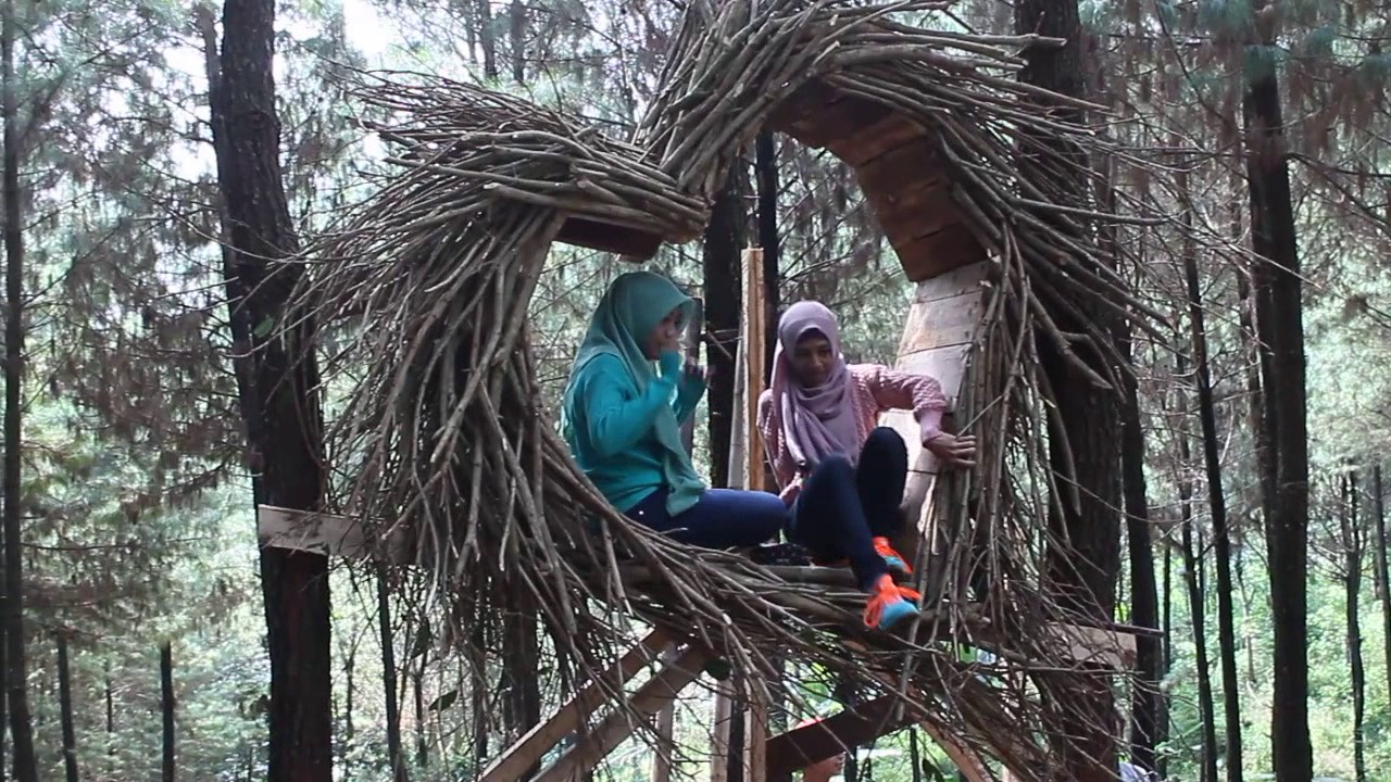 wana wisata BUKIT PINUS / HUTAN PINUS / BUKIT HIJAU Wonosalam Jombang Jatim. - YouTube