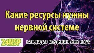 Как и чем питать нервную систему? Витамины поддерживающие здоровье нервной системы. Список от врача!