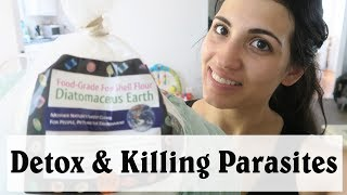 Benefits of Diatomaceous Earth | Detoxifying The Body and Killing Parasites