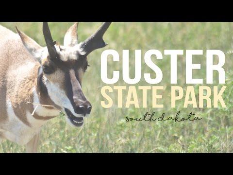 Exploring Custer State Park, South Dakota - a Drivin' & Vibin' Travel Vlog