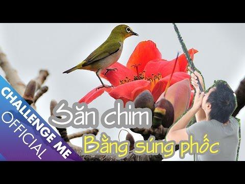 Săn chim Vành Khuyên bằng Súng Phốc giữa Hà Nội