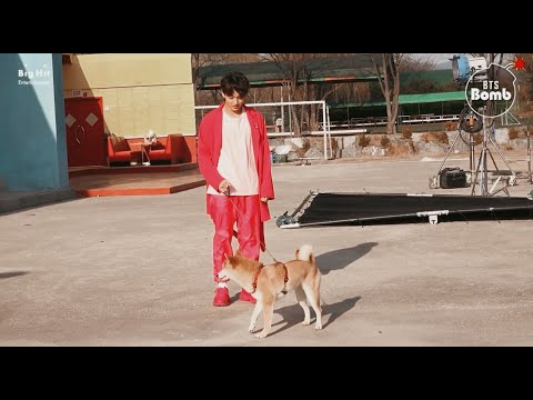 [Sub Español] [BANGTAN BOMB] There's a Dog on the Set with BTS! - BTS (방탄소년단)