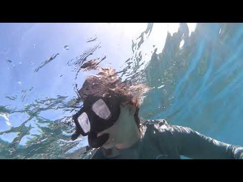 Nassau Snorkeling Adventure 2020