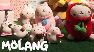 Molang 몰랑이 - Unboxing of cute Molang toys, plushies, diaries or stickers | 토이 몰랑이