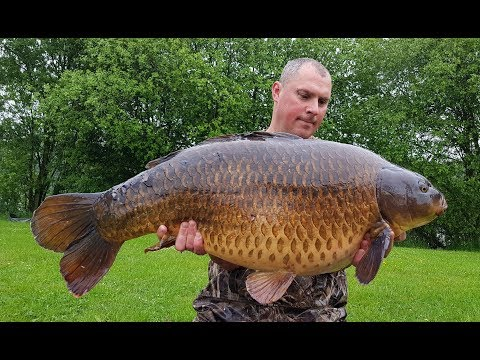 Ep156 - 42lb Common New Pb @ Kingfisher Social