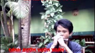 Cánh Bướm Vườn Xuân (bass lưỡi) - Duy Quang - Gò Vấp Harp Club - A10 Band