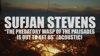 """Sufjan Stevens """"The Predatory Wasp of the Palisades is Out to Get Us"""" (ACOUSTIC) (AUDIO)"""