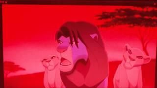 Il Re Leone 2 - Barbari