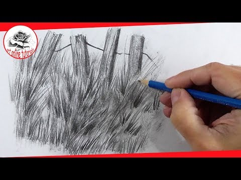 How To Draw Grass With Pencil Easy And Step By Step