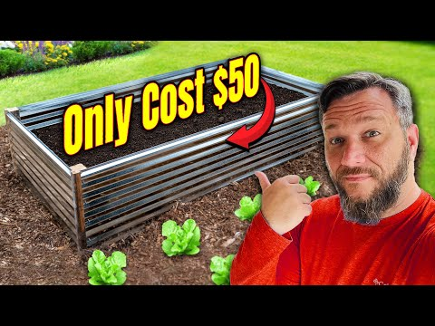 Build a 4×8 Raised Garden Bed for $50! This Hack Makes it Stronger With No Wood (almost)