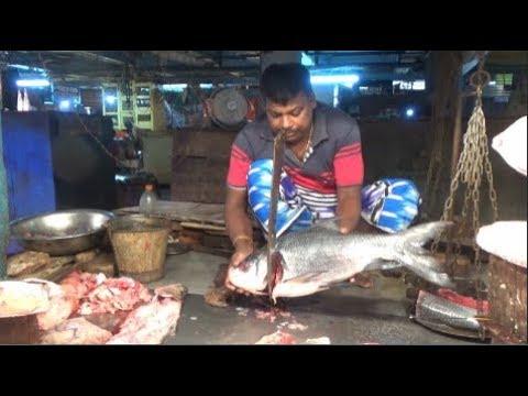 Fish Cutting In India | Amazing Fish Cutting Skill - Big Catla Fish Cutting At Gariahat Fish Market