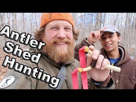 Deer Antler Shed Hunting For Making Slingshots (Vlog #25)