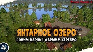 Янтарное озеро Ловля карпа на донку Driler Русская Рыбалка 4