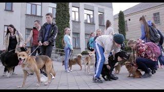 Відеорепортаж. Мер Жмеринки тікав від дітей і собак