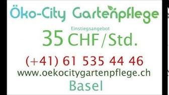 Hegenheimerstrasse  Basel   35CHFstd  Gärtner  4055