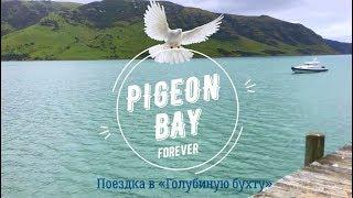PIGEON BAY Forever -  «Поездка в Голубиную бухту»