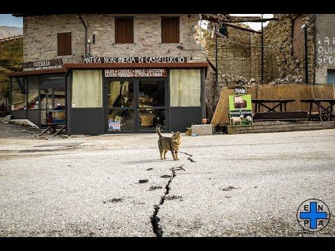 Istantanee dal disastro | L'intervento di Enpa per gli animali | Terremoto a Norcia 2016