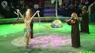 """Цирк """"Белиссимо"""" в Новосибирске. Какие сюрпризы для зрителей приготовили организаторы?"""