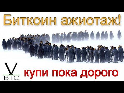 Ажиотаж на рынке криптовалют!! Bakkt продал 1 биткоин, Вася 3 BTC - налетай пока дорого!!!