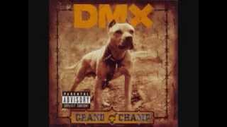 dmx - dogs out