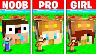 Noob Vs Pro Vs Girl Friend Tiny Minecraft House Battle!  Build Challenge