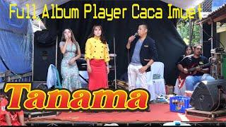 Muatep!!!!!FULL ALBUM TANAMA MUSIC PLAYER CACA HOUSE MUSIC LIVE PECANGAAN-WEDDING FIRIN DENGAN YUNI