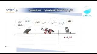 الرابع الابتدائي   الفصل الدراسي الثاني   لغتي   النسر والعصافير