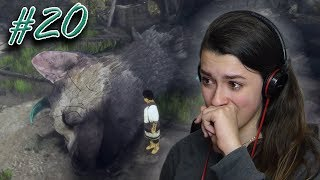I CRIED... | The Last Guardian #20
