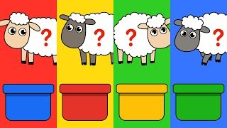Learn Colors With Little Lamb Friends For Babies Kids - LuLuPop TV