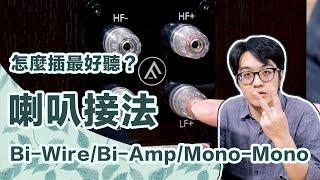 喇叭怎插最好聽BiWire/BiAmp/MonoMono接法徹底比較【CC字幕4K】