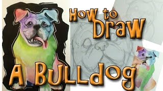 How To Draw A Bulldog Sitting